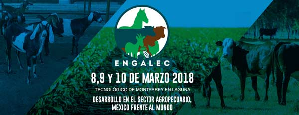 banner-engalec-2018
